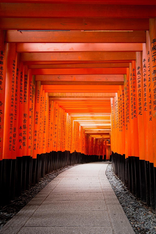Fushimi Inari Taisha - Toris de Kyoto
